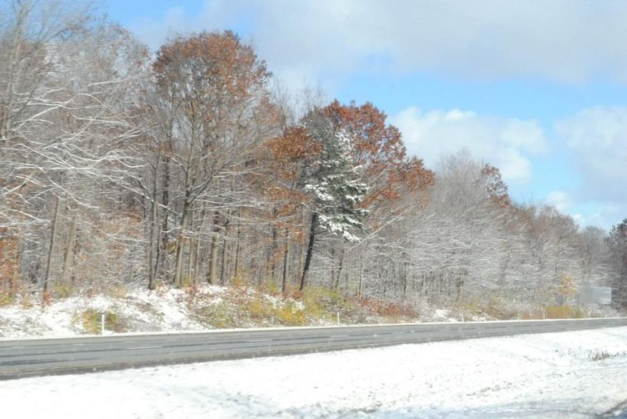 truck drivers picture of the tree-lined open road in the snow in autumn
