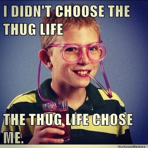 thug-life-meme-glasses_zpsghmqkiq4.jpeg