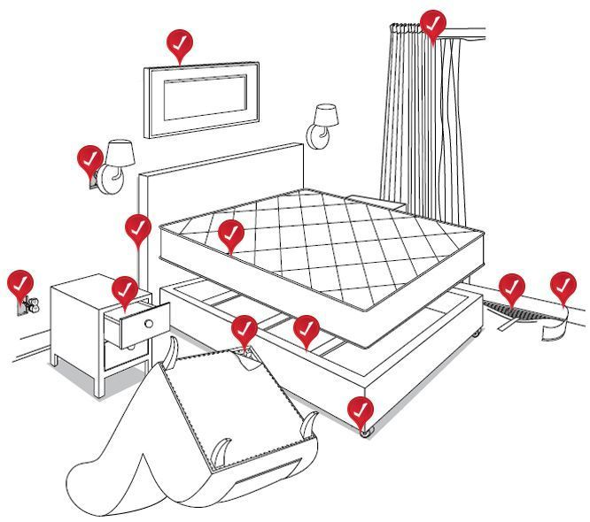 95cb16880565bfca827c8cff6ae2fe99--bed-bugs-treatment-diy-bed.jpg