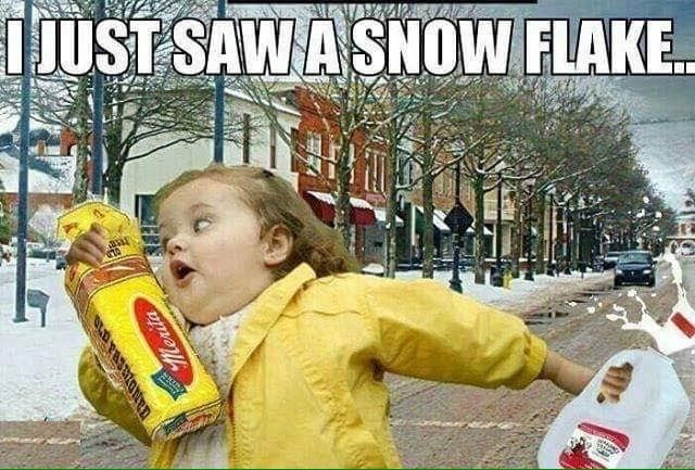 i-just-saw-a-snowflake.jpg