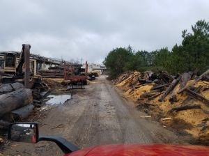 Road into lumber mill.