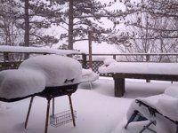 Snowy Winter!