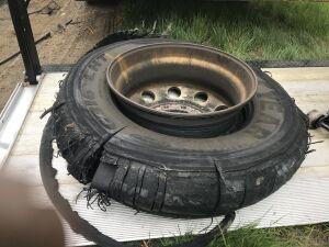Tire shred