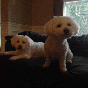 Rainy & Gigi