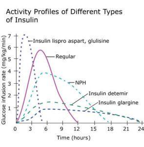 Insulin graph