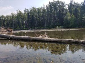 River in BC