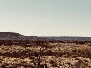 Desert scene in New Mexico